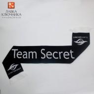 Шарф с логотипом Team Secret